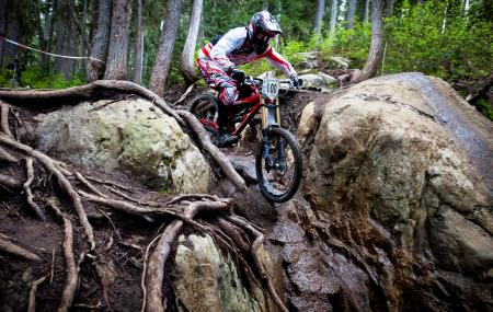 Whistler Mountain Bike Park Image