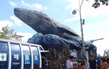 Jangsaengpo Whale Museum Image