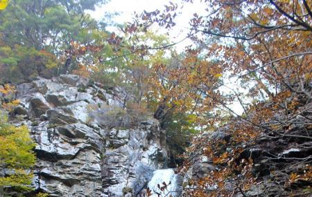 Paraeso Falls Image