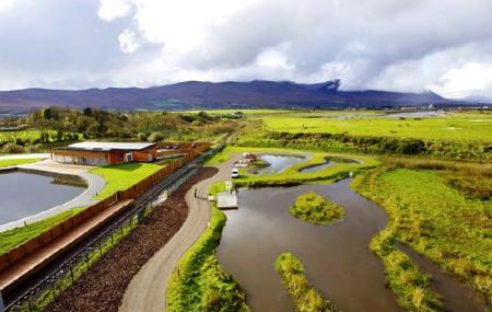 Tralee Bay Wetlands Centre Image