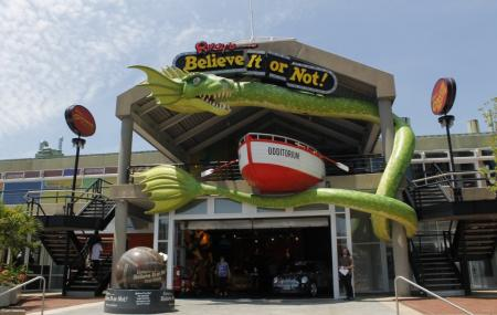 Ripleys Believe It Or Not! Baltimore Image