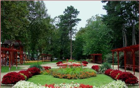 Jokai Park Image