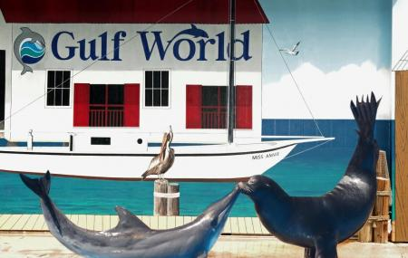 Gulf World Marine Park Image