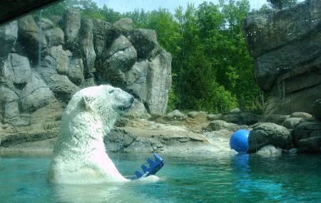 Zoo World Zoological Conservatory Image