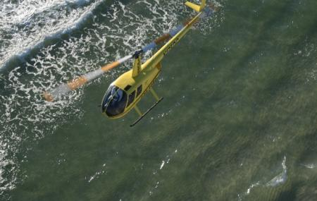 Panhandle Helicopter Image