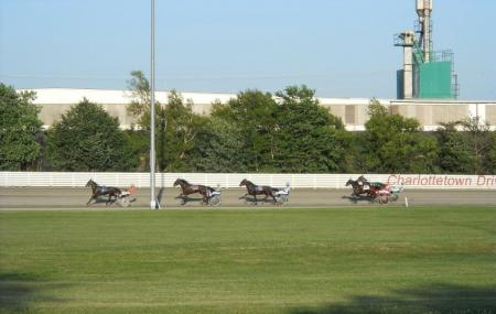Red Shores Racetrack And Casino