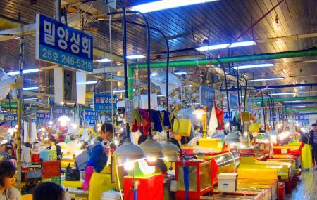 Jagalchi Market Image