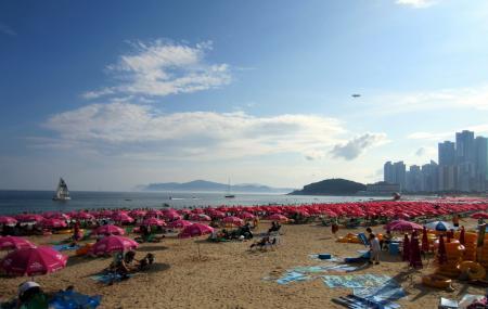 Haeundae Beach Image