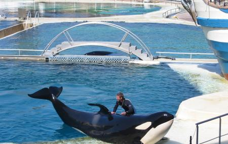 Marineland, Antibes