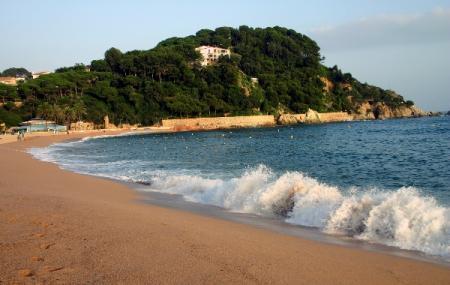 Los Nietos Beach Image