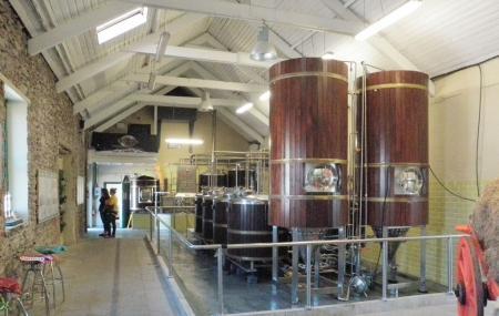 Dingle Brewery Company Image