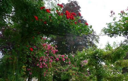 Jardin Public De Bayeux Image