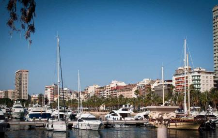Alicante Marina Image