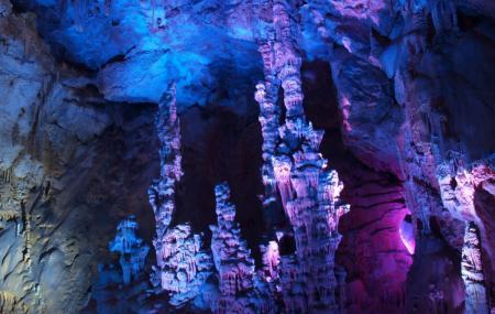 Canelobre Caves Image