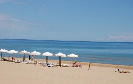 Guardamar Beach Image