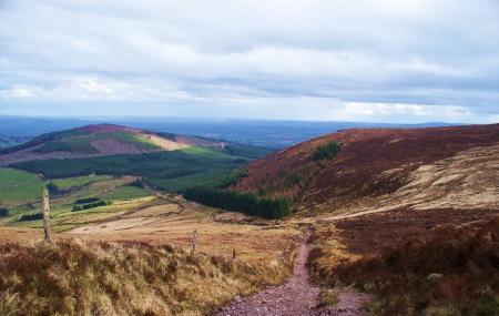 Ballyhoura Mountains Image