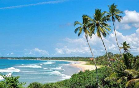 Bentota Beach Image