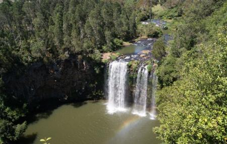 Dorrigo National Park Image