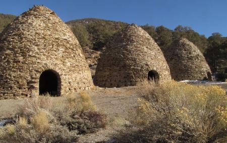 Charcoal Kilns Image