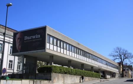 Stavanger Museum Image