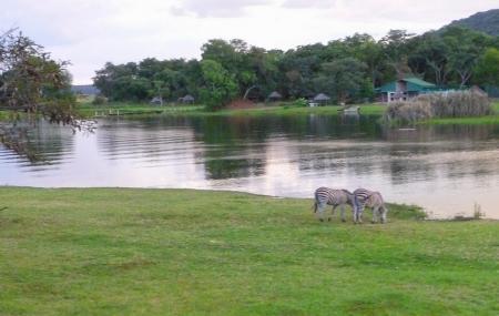 Lake Chivero Recreational Park Image