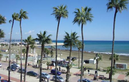 Finikoudes Beach And Promenade Image