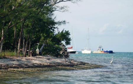 Wisteria Island Image