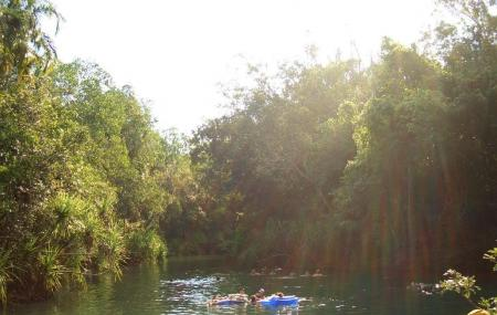 Berry Springs Nature Park Image