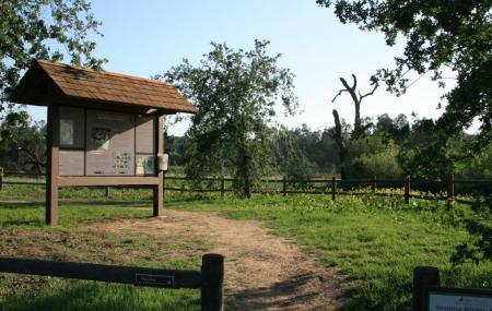 Ojai Meadows Preserve Image