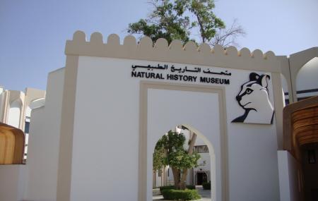 Oman Natural History Museum Image
