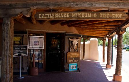 Rattle Snake Museum Image