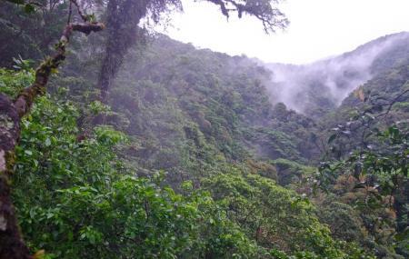 Tenorio Volcano National Park Image