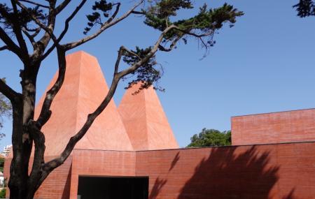 House Of Stories Paul Rego Or Casa Das Historias Paula Rego Image