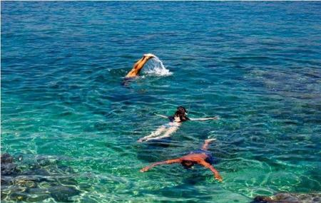 Snorkelling In Cavtat Image