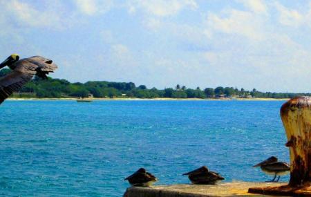 Bollard Bay Image