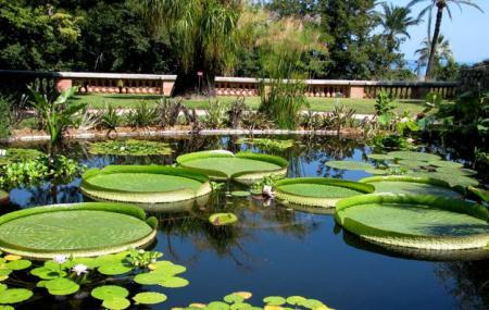 Jardin Botanique Et Exotique Val Rahmeh Image