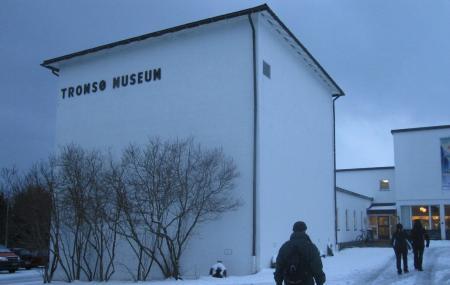 Tromso Museum Image