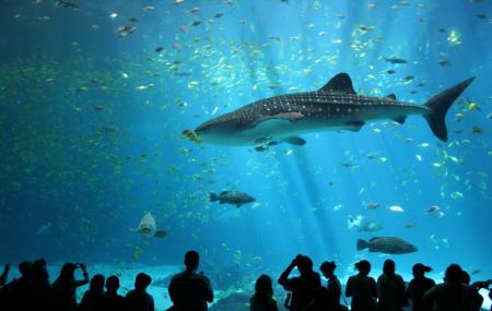 Aquarium Of Quebec Image