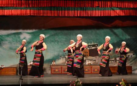 Tibetan Insititute Of Performing Arts Image