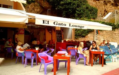 El Gato Lounge Image