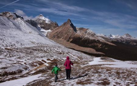 Parker Ridge Trail Image