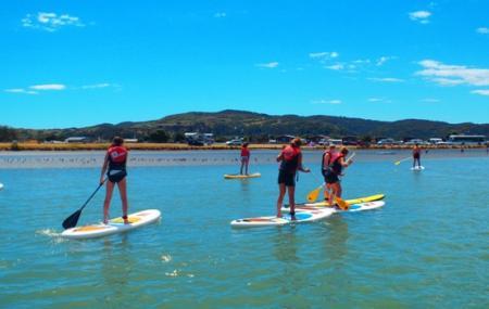Raglan Paddle-boarding Image