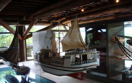 Museu Amazonico Image