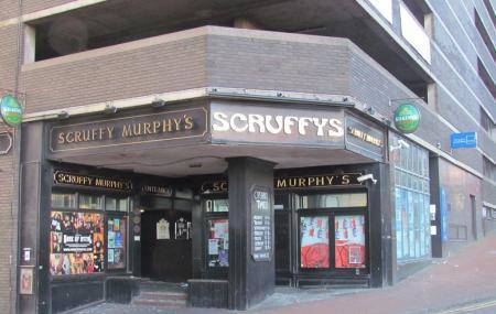Scruffy's Image