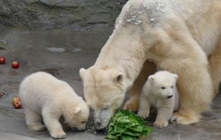 Zoo Karlsruhe Image