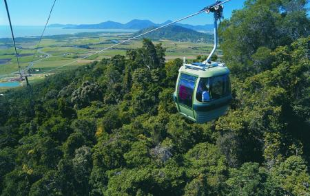 Skyrail Rainforest Cableway Image
