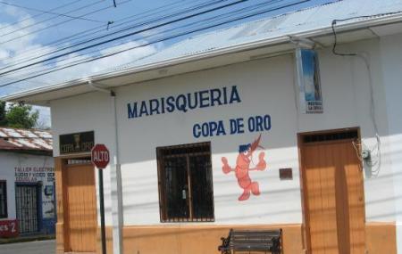 Copa De Oro Image