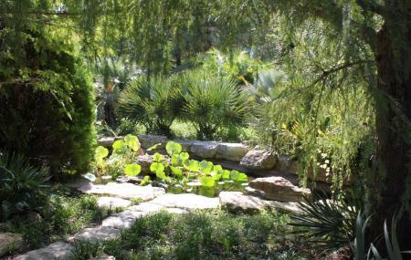 The Botanic Garden, Metz