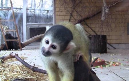 Zoo Vivarium Image