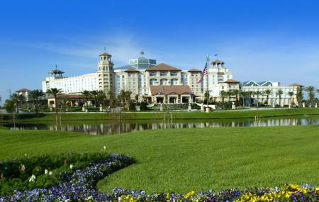 Gaylord Palms Resort And Convection Centre Image
